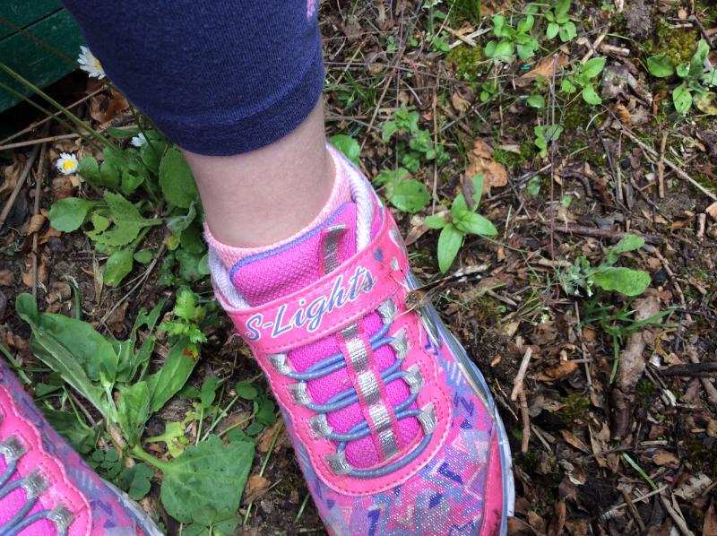 One of our butterflies liked Ava's trainers :o)