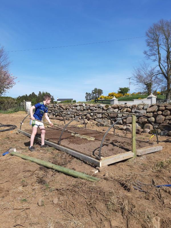 Shea is growing his own vegetables in Leitrim.