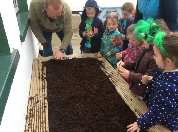 George tells us how to plant the spuds.