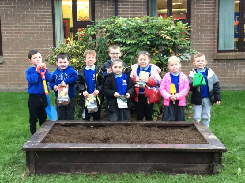 We are planting bulbs.