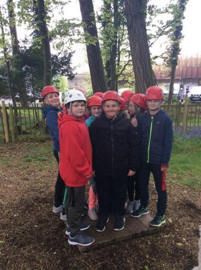 How many P7s can you fit on a piece of wood?