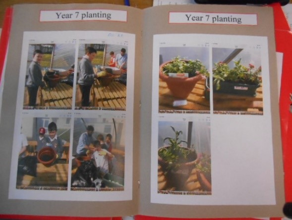 Some activities we are involved in, planting.