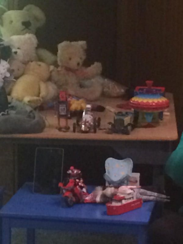Can you see all the teddies?