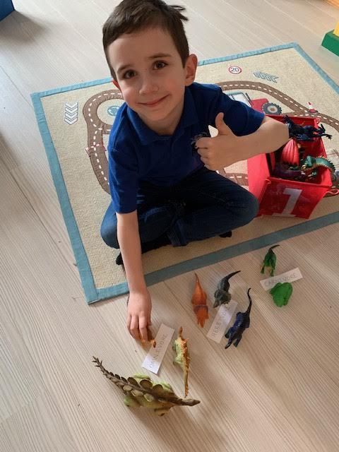 James sorting his dinosaurs 🦕 🦖