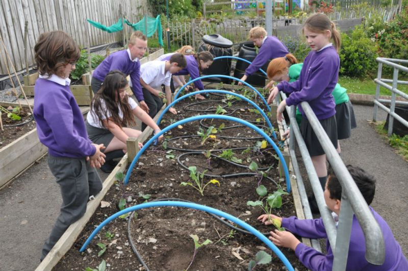Y6 pupils working on our raised beds