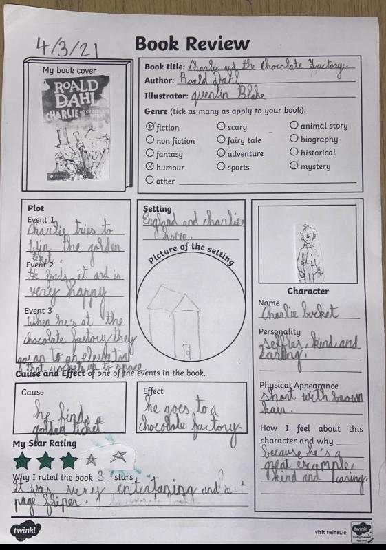 This marvellous book review is by Therese. Roald Dahl really was an exceptional author!😀