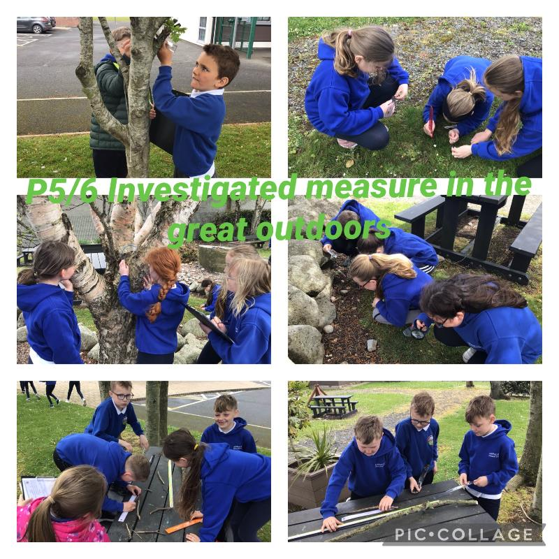 P5/6 measured the Length of objects in our local environment.