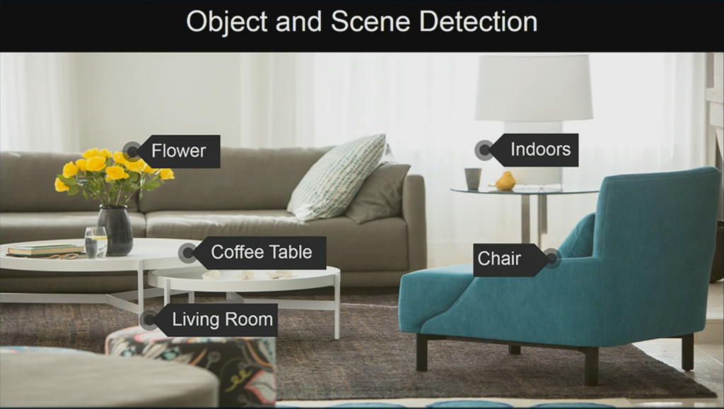 Object and Scene Detection