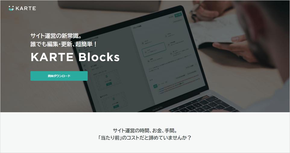 KARTE Blocks