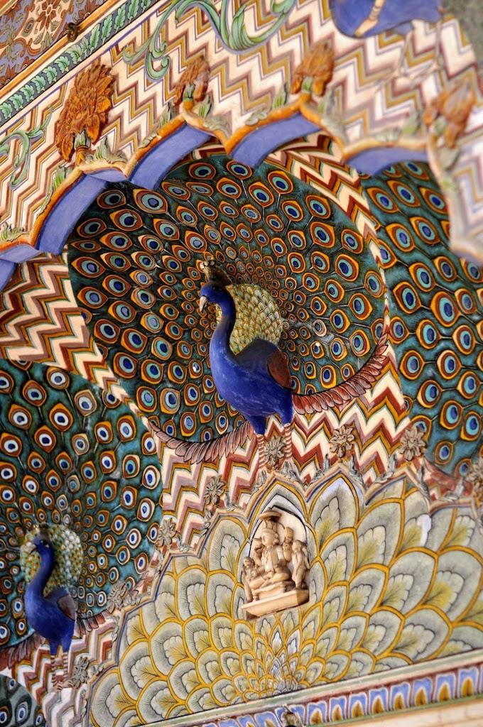 viajar a Jaipur - pavo real