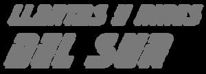 Llantas Rines Sur Logo gris