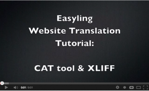 Website translation with Easyling & memoQ/XLIFF