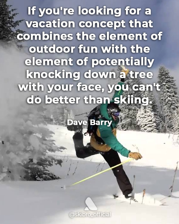 Funny skiing quote by dave barry - knocking trees down with your face