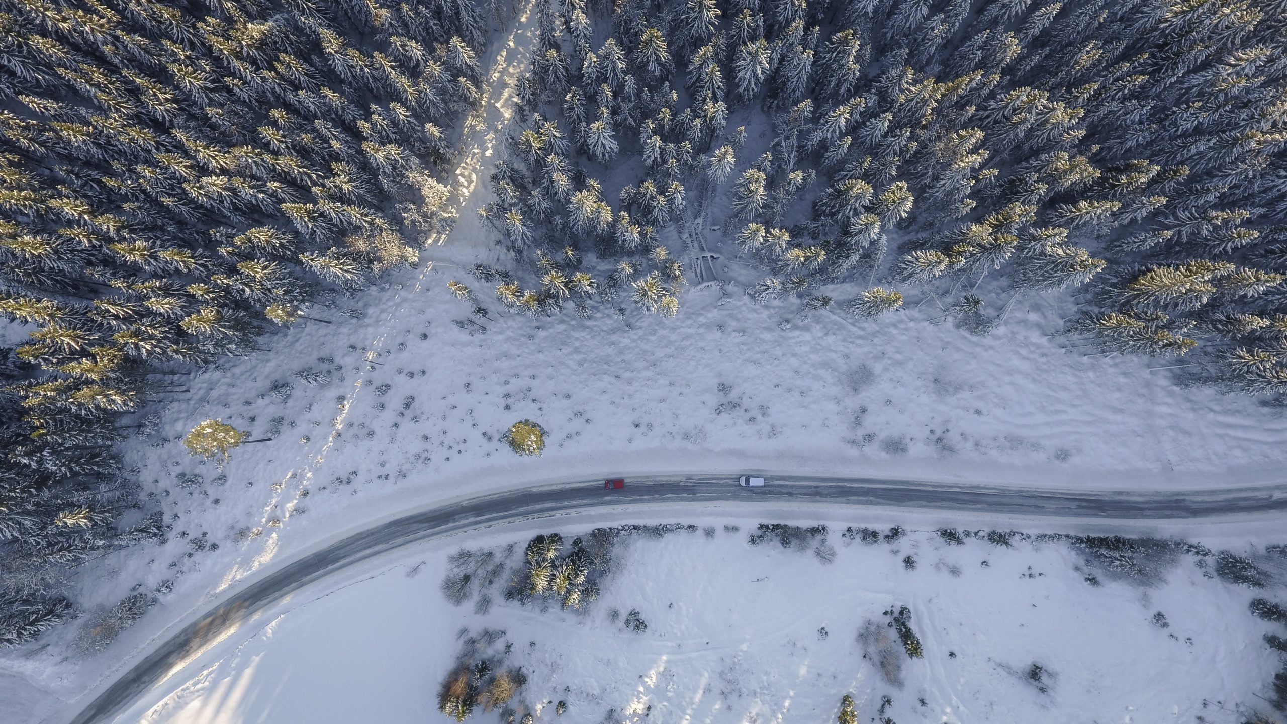 cars driving through snow covered trees, shot from drone