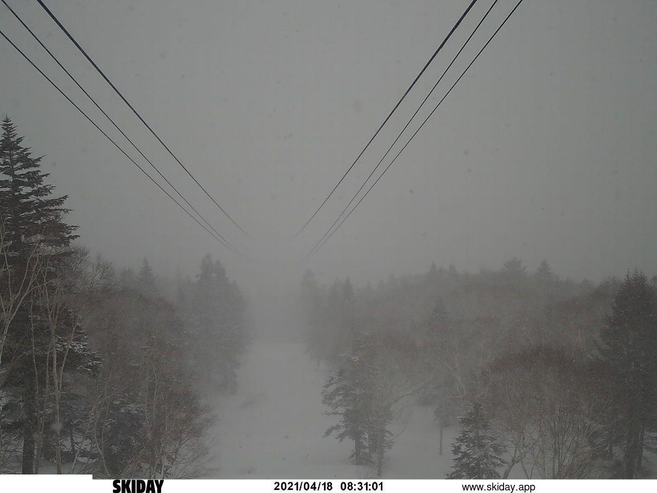 栂池高原スキー場/ゴンドラ山頂駅(降雪計)画像