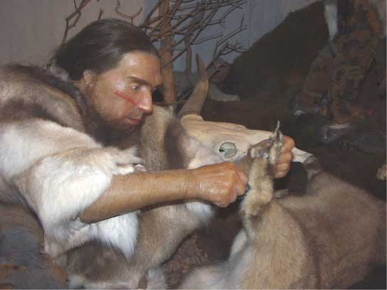 The illustration shows a very human looking Neanderthal wearing fur and cutting a hide with a stone tool.