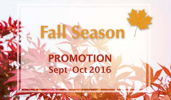 Fall Season Promotion Sept/Oct 2016 (Expired)