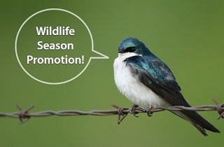 Wildlife Season Promotion 2016 (Expired)