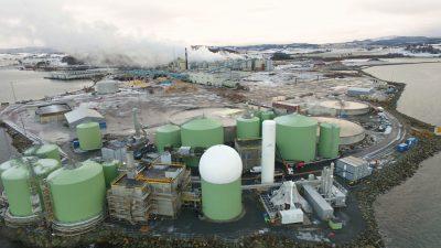 Biokraft Skogn