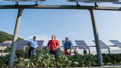 Solcelle innovasjon
