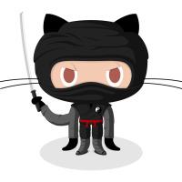 web udvikling ninja