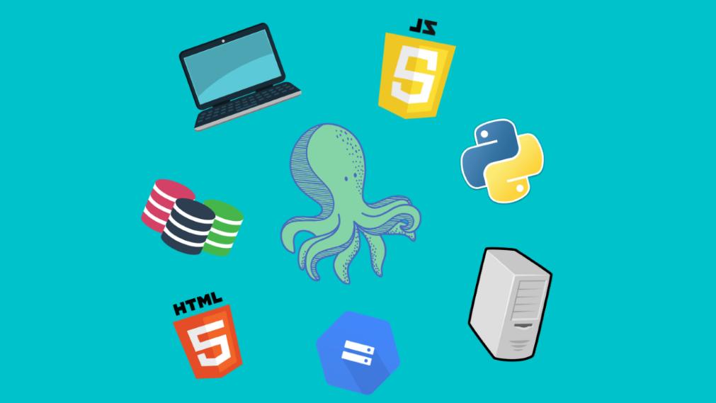 Wat is een volwaardige ontwikkelaar?