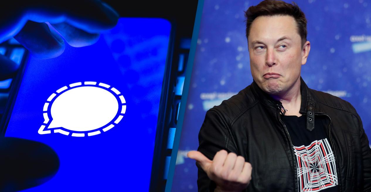 Tudo que precisas saber sobre o Elon Musk e o Signal