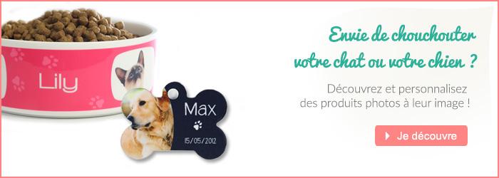 accessoires pour chien ou chat