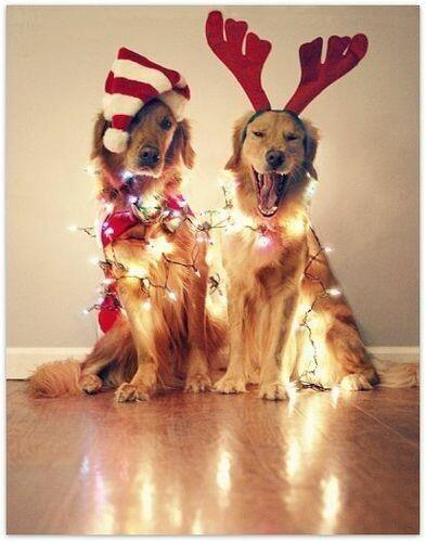 tendance décoration Noël 2016