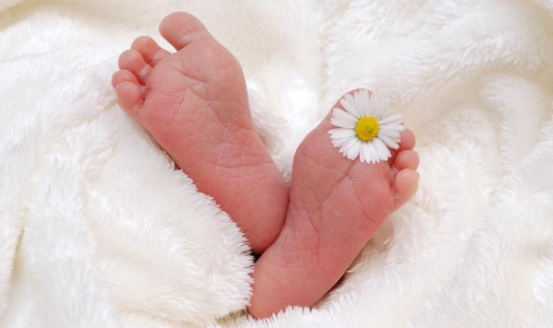 2 petits pieds de bébé dépassent d'une couverture blanche.. Une pâquerette est calée entre les orteils du pied gauche.