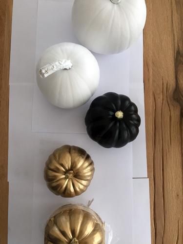 Kürbisse lackiert als Herbst-Deko