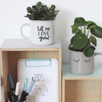 Deko-Tassen mit Pflanzen