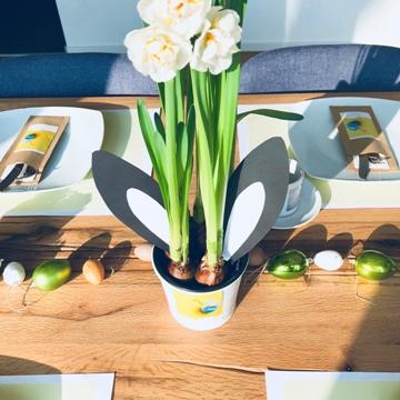 osterbrunch-tischdeko-blumendeko-frühlingsblumen-hasenohren-sticker-smartphoto