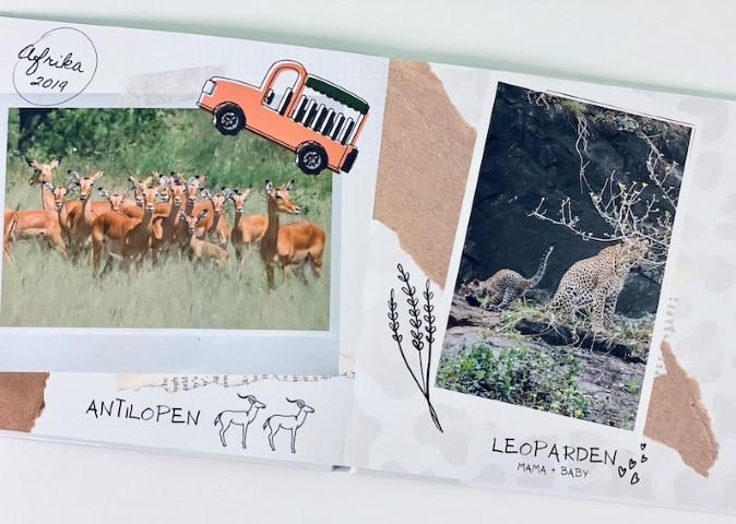 Bilderbuch mit Tieren in Afrika