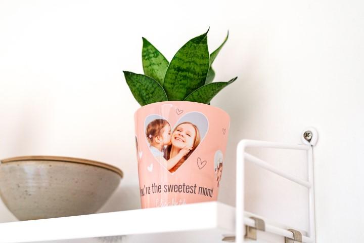 Blumentopf für Gärtnerinnen