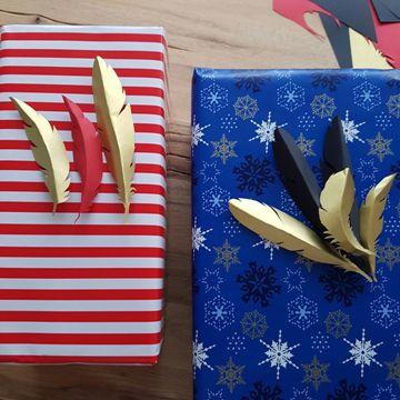 Emballage cadeau avec plumes décoratives