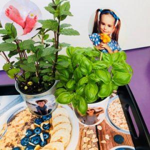 fête des mères-bricolage-maman-autocollants-herbes aromatiques-jardin aromatique-plateau-photos-smartphoto