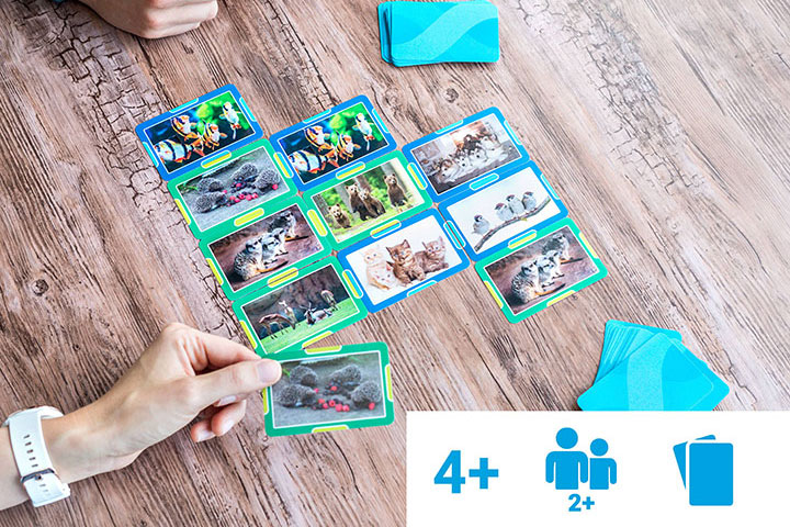 """Cartes """"Puissance 4"""" avec photos d'animaux"""