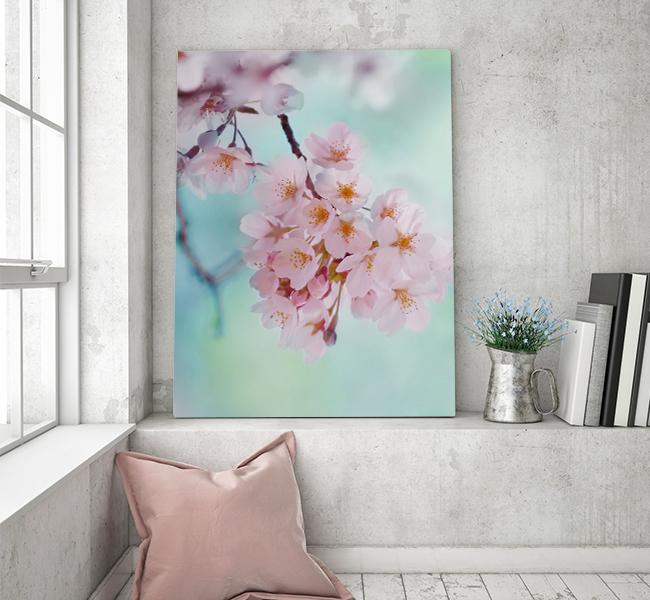 sakura-pastel-wit