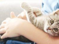 Je huisdier en jezelf verwennen op Werelddierendag doe je zo!