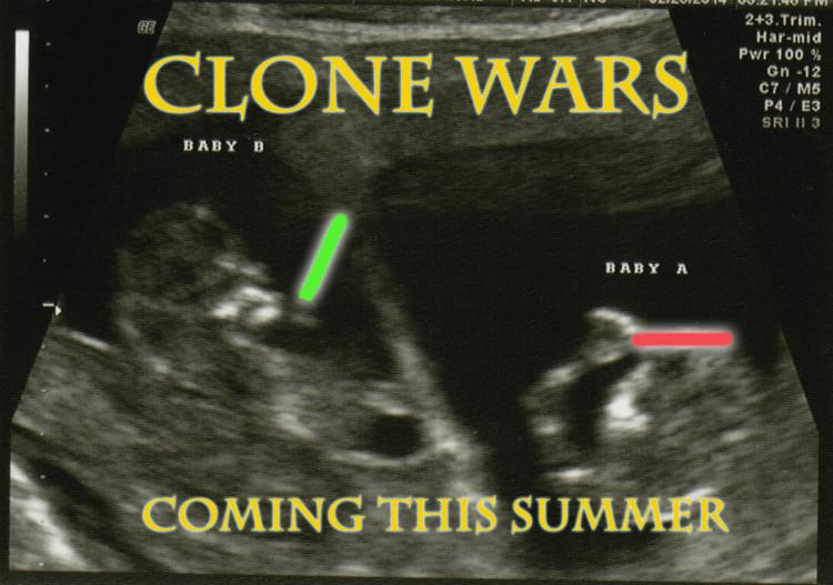 zwangerschapsaankondigingen-tweeling_oorlog-buik