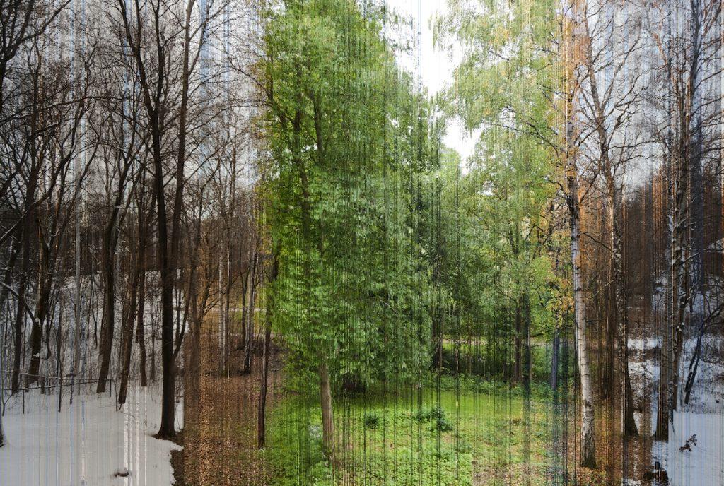fotoproject 2015 - 1 per uur