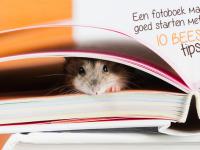 Een fotoboek maken: goed starten met onze 10 BEESTIGE tips