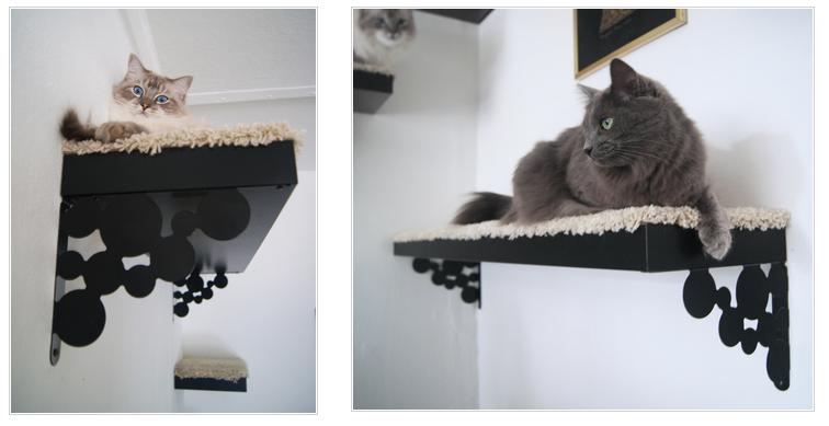 Accessoires pour chien ou chat 2