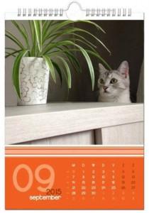 kalender-met-Instagram-foto's-wandkalender-A3