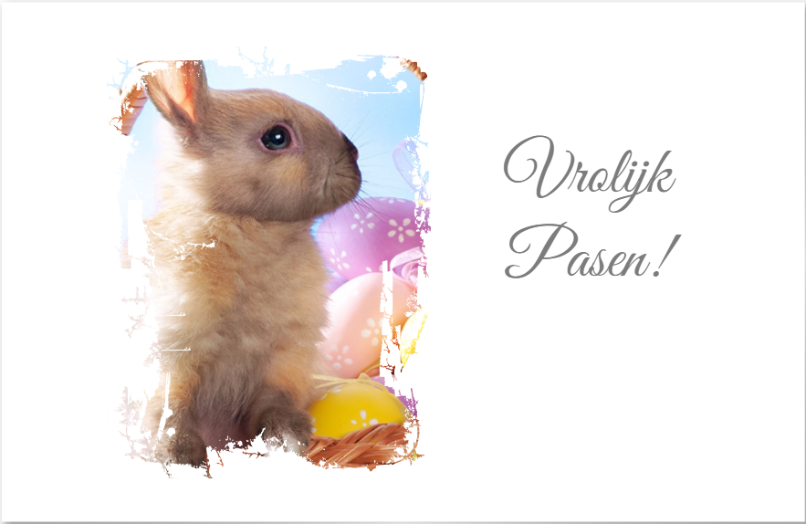 FireShot Screen Capture #005 - 'Creator' - www_smartphoto_be_nl_producten_kaartjes_cadeaukaartjes_creator_def=aa302277-0588-4d9e-9466-03cc1cd3bec0&quantity=10&p=gifttag&cpc=gifttag&cppn=gifttag_whiteonepho