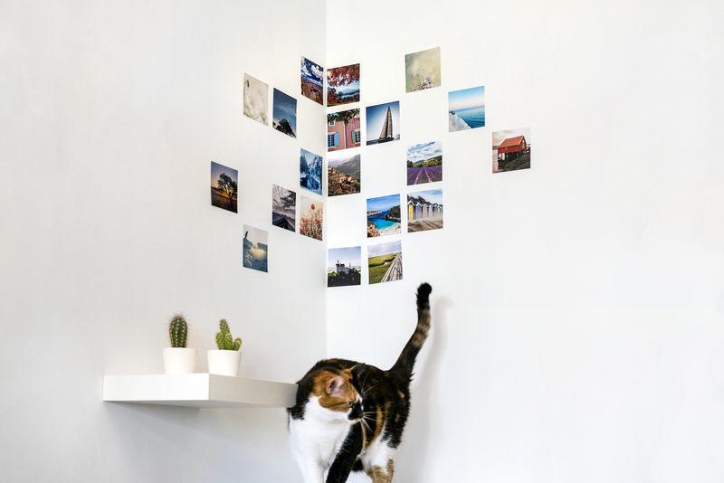 Creatieve manieren om je foto's op te hangen