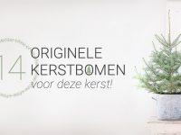 Ga deze kerst voor een echt originele kerstboom!