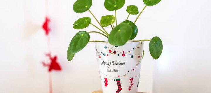 10 unieke kerstcadeautjes onder 20 euro