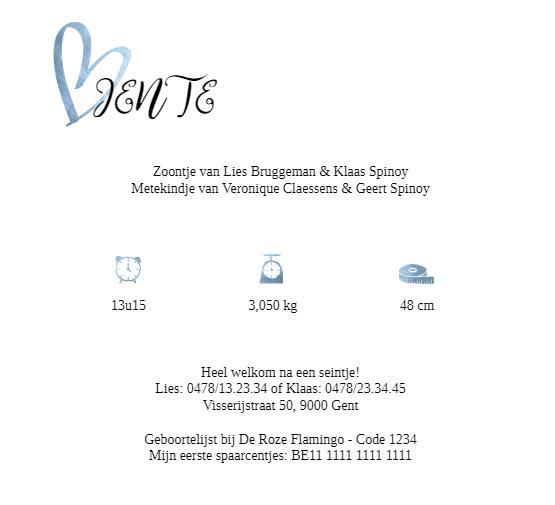 """Achterzijde geboortekaartje smartphoto met oa tekst """"Heel welkom na een seintje"""""""